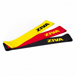 Mini-bandes ZIVA